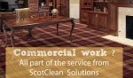 Paisley Carpet Cleaning